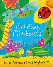 Mad About Minibeasts Baoardbook